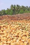 Stos odrzucać kokosowe plewy obraz stock