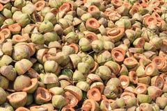 Stos odrzucać kokosowe plewy zdjęcie royalty free