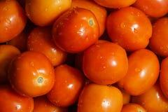 Stos organicznie czerwoni pomidory Obrazy Stock