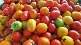 Stos pomidory w rynku Obrazy Royalty Free
