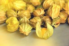 Stos przylądków agresty, organicznie świeża owoc od gospodarstwa rolnego Zdjęcia Royalty Free