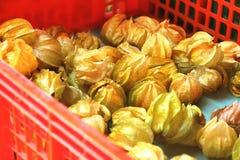 Stos przylądków agresty, organicznie świeża owoc w koszu Obrazy Royalty Free