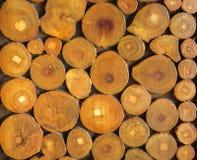 Stos rżnięta drewniana fiszorek bela Obraz Royalty Free
