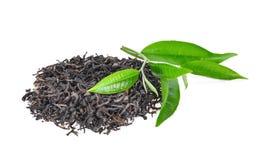 Stos wysuszona zielona herbata z świeżymi zielona herbata liśćmi odizolowywającymi Obrazy Stock