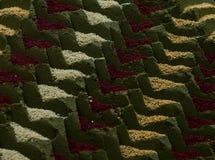 Stos zaatar za ` atar, bliskowschodnia pikantności mieszanka z sezamowymi ziarnami, sól, oregano, macierzanka i lebiodki, - odoso fotografia stock
