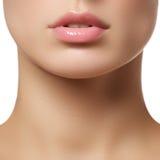 stosować glosy wargę robi profesjonalisty stosować Lipgloss szminka Obraz Royalty Free