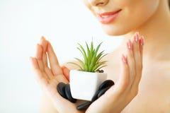 stosowanie opieki skóry przejrzystego lakier pięknej twarzy zieleni przyrodnia liść podcieniowania kobieta Jest zdjęcie royalty free