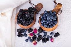 Stosy czarne jagody i czernicy w Kuks Antyczny Lapland F Zdjęcie Stock