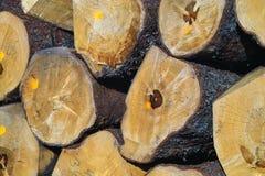 stosy drewna fotografia stock