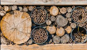 Stosy drewniani bagażniki cią w górę różnych rozmiarów w zdjęcia stock