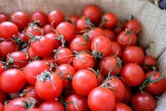 Stosy pomidory wewnątrz wyplatają kosz Zdjęcie Royalty Free