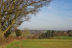 Stour Valley, R-U images stock