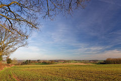 Stour Valley,UK, in Winter Royalty Free Stock Photos