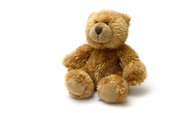 Stout bear. Isolated teddy bear on the white background royalty free stock photo