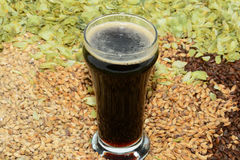 Stout in taster glass. Taster size glass with grains and hops with stout beer Royalty Free Stock Photography