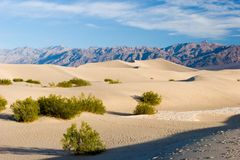 Stovepipe Dunes Stock Image
