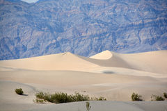 Stovepipe Wells sand dunes Royalty Free Stock Photo