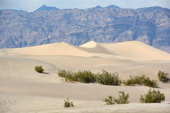 Stovepipe Wells sand dunes Stock Photos