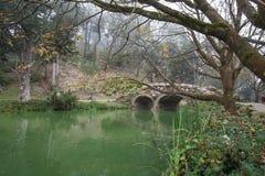 Stow湖石头桥梁和死的树在金州公园,旧金山在一个有雾的冬天早晨 库存图片