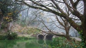 Stow湖石头桥梁和死的树在金州公园,旧金山在一个有雾的冬天早晨 免版税库存图片