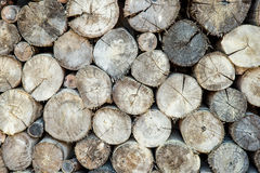 Stow of firewood just before winter Stock Image