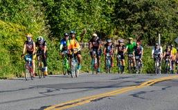 STP Сиэтл 2018 к велосипедистам Портленда имея время их жизней на красивый летний день Стоковые Изображения RF