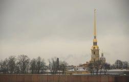 StPetersburg在冬天 免版税库存图片