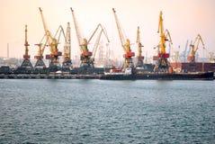 sträcker på halsen hamn Royaltyfri Fotografi