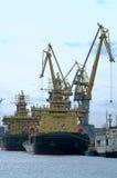 sträcker på halsen hamn flera ships Arkivbild