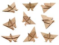 sträcker på halsen origami Arkivfoton