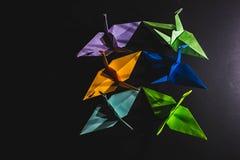 Sträcker på halsen origami som komponeras av papper av olika färger Kranar är Arkivbild
