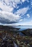 Sträng skönhet av nordlig sommar Arkivbilder
