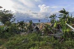 Sträng skada från jordskalv- och smältningnaturkatastrofer royaltyfri foto