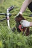 Stränga beskärarelokalvård, når du har klippt gräset, workflow Royaltyfria Foton