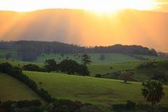 Strålar av solen över frodiga ängar på solnedgången Royaltyfria Foton