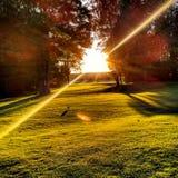Strålar av solen Fotografering för Bildbyråer