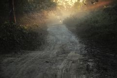 Strålar av solen i skog med en motorcykel fotografering för bildbyråer