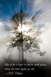 Strålar av solljus i den Yellowstone nationalparken Royaltyfri Bild