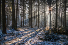 Strålar av Sun Arkivfoto