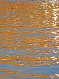 Strålar för solkatt` s på vattnet Fotografering för Bildbyråer