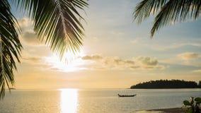 Strålarna för sol` som s passerar till och med gömma i handflatan, förgrena sig Tropiska träd på kustsolnedgångtiden Royaltyfri Bild