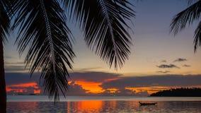Strålarna för sol` som s passerar till och med gömma i handflatan, förgrena sig Tropiska träd på kustsolnedgångtiden Royaltyfri Fotografi