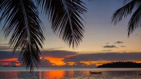 Strålarna för sol` som s passerar till och med gömma i handflatan, förgrena sig Tropiska träd på kustsolnedgångtiden Royaltyfria Bilder
