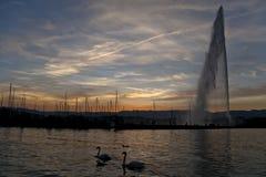 stråle för D eau Arkivbilder