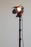 Strålkastare med halogenkulan och den Fresnel linsen Belysningsutrustning för studiofotografi eller videography arkivbilder