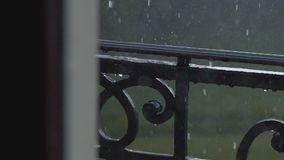 Strålregn nära stock video