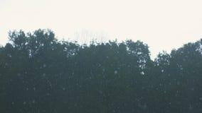 Strålregn nära arkivfilmer