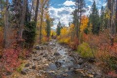 Ström av vatten på en färgrika Autumn Day arkivbild