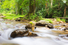Ström av vattenfallet Royaltyfri Bild