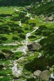 Ström i dalen Arkivbilder